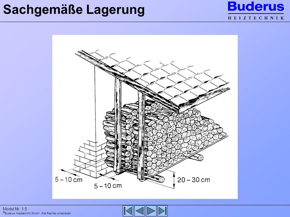 Buderus Heiztechnik GmbH. Alle Rechte vorbehalten. Modul Nr. 1.5 Sachgemäße Lagerung