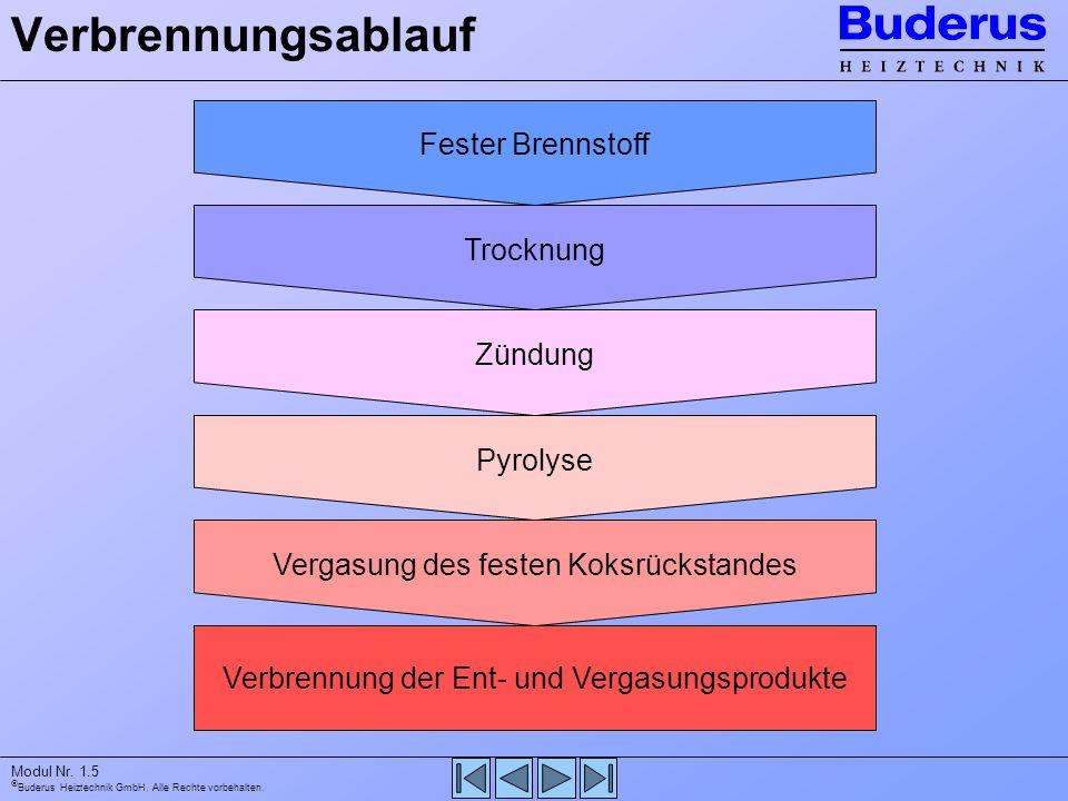 Buderus Heiztechnik GmbH. Alle Rechte vorbehalten. Modul Nr. 1.5 Verbrennungsablauf Fester Brennstoff Trocknung Zündung Pyrolyse Vergasung des festen