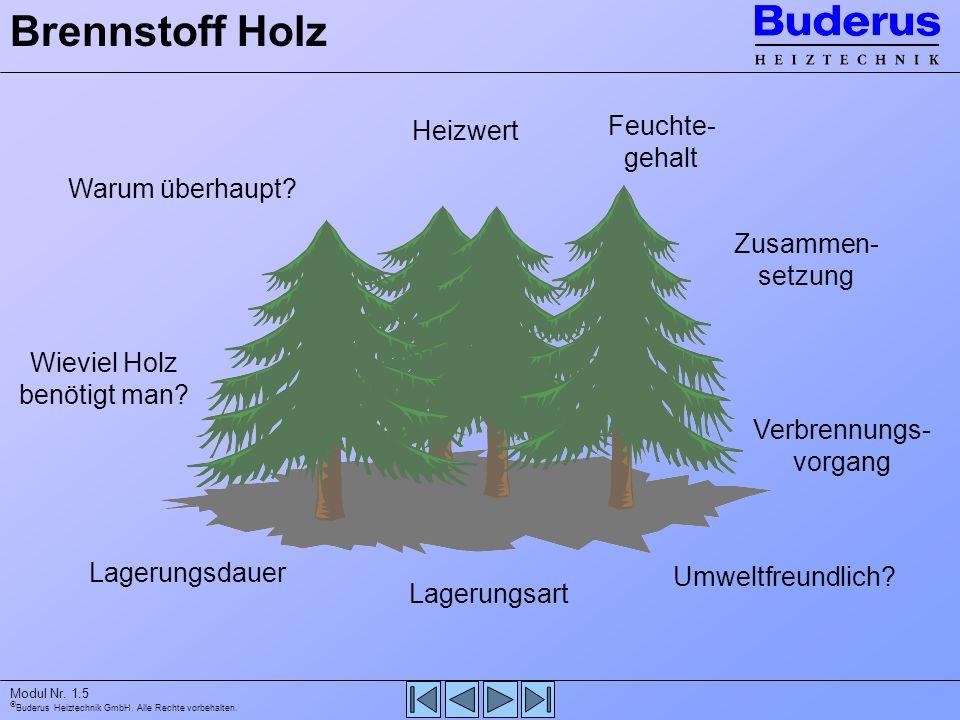 Buderus Heiztechnik GmbH. Alle Rechte vorbehalten. Modul Nr. 1.5 Warum überhaupt? Lagerungsdauer Feuchte- gehalt Heizwert Lagerungsart Umweltfreundlic