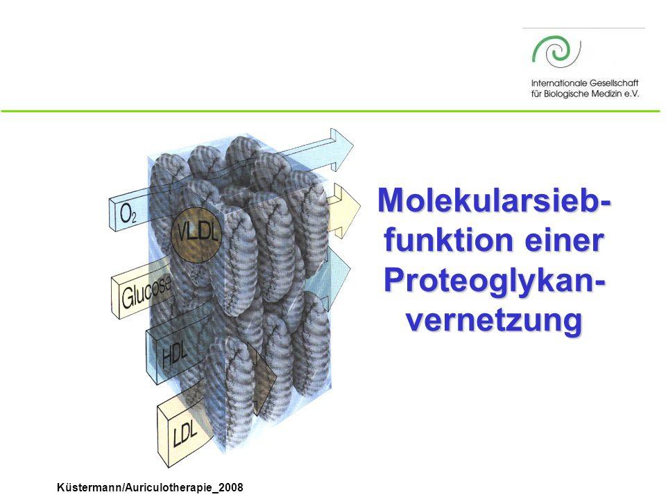 Küstermann/Auriculotherapie_2008 Molekularsieb- funktion einer Proteoglykan- vernetzung