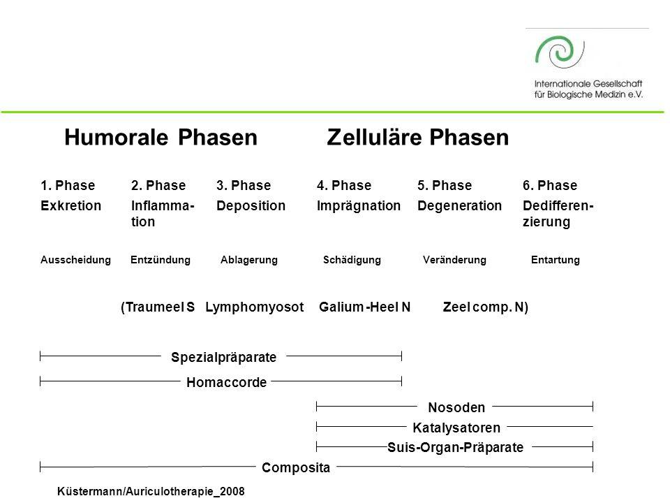 Küstermann/Auriculotherapie_2008 Humorale PhasenZelluläre Phasen 1. Phase Exkretion 2. Phase Inflamma- tion 3. Phase Deposition 4. Phase Imprägnation