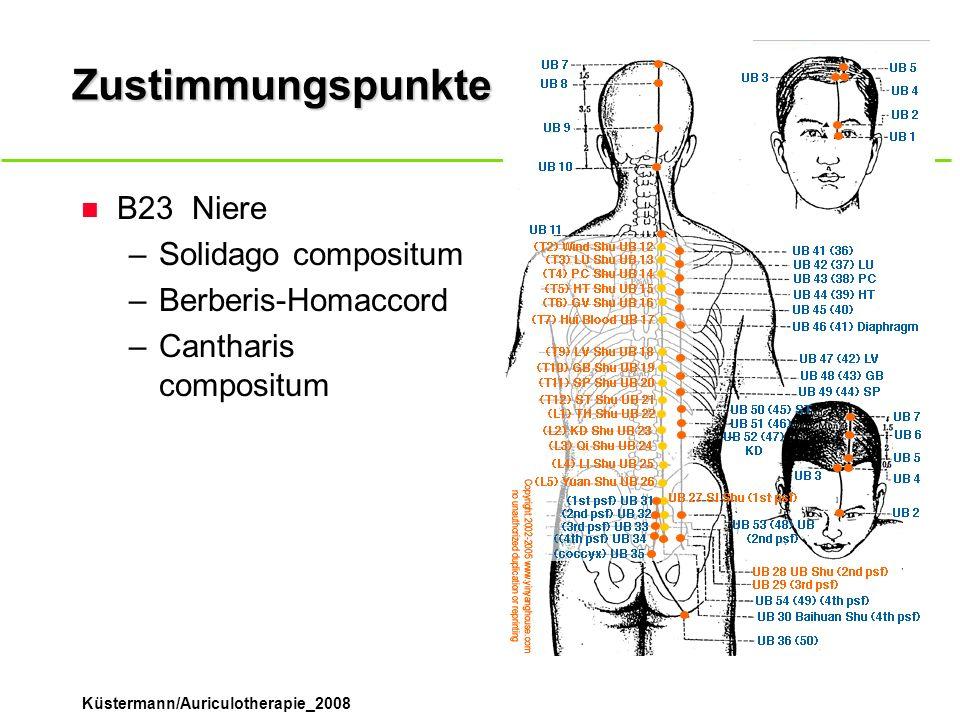 Küstermann/Auriculotherapie_2008 Zustimmungspunkte n B23Niere –Solidago compositum –Berberis-Homaccord –Cantharis compositum