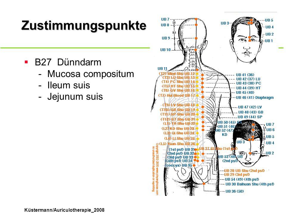 Küstermann/Auriculotherapie_2008 Zustimmungspunkte B27Dünndarm -Mucosa compositum -Ileum suis -Jejunum suis