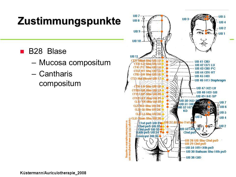 Küstermann/Auriculotherapie_2008 Zustimmungspunkte n B28Blase –Mucosa compositum –Cantharis compositum