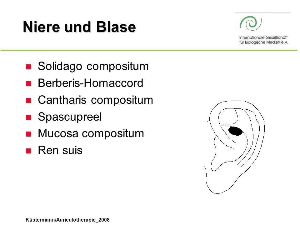 Küstermann/Auriculotherapie_2008 Niere und Blase n Solidago compositum n Berberis-Homaccord n Cantharis compositum n Spascupreel n Mucosa compositum n