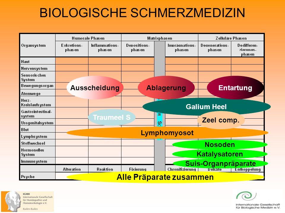 BIOLOGISCHE SCHMERZMEDIZIN AusscheidungAblagerung Lymphomyosot Traumeel S Galium Heel Nosoden Zeel comp.