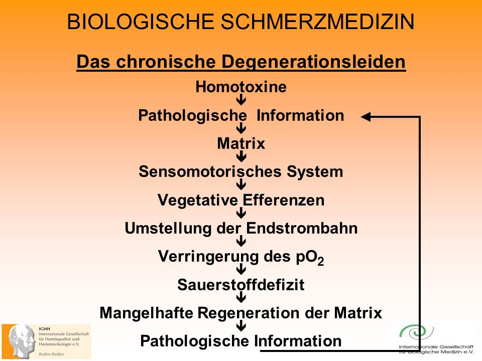 BIOLOGISCHE SCHMERZMEDIZIN Das chronische Degenerationsleiden Homotoxine Pathologische Information Matrix Sensomotorisches System Vegetative Efferenze