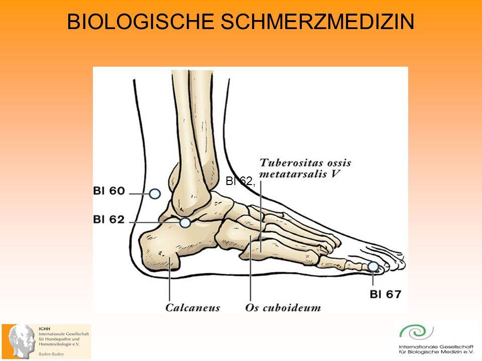BIOLOGISCHE SCHMERZMEDIZIN Bl 62,