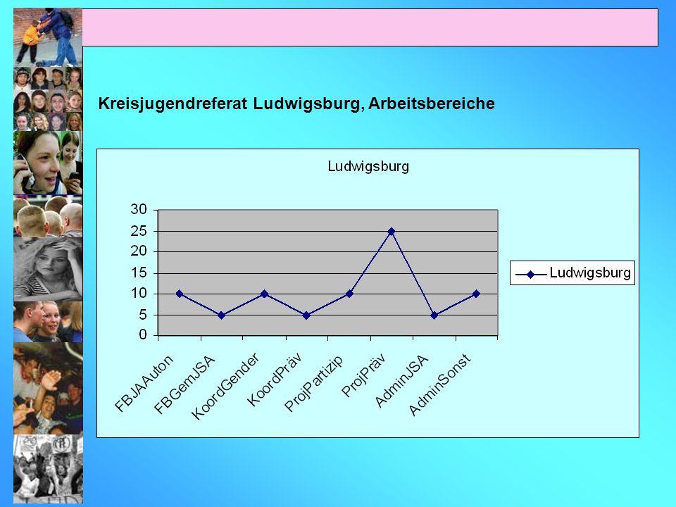 Kreisjugendreferat Ludwigsburg, Arbeitsbereiche