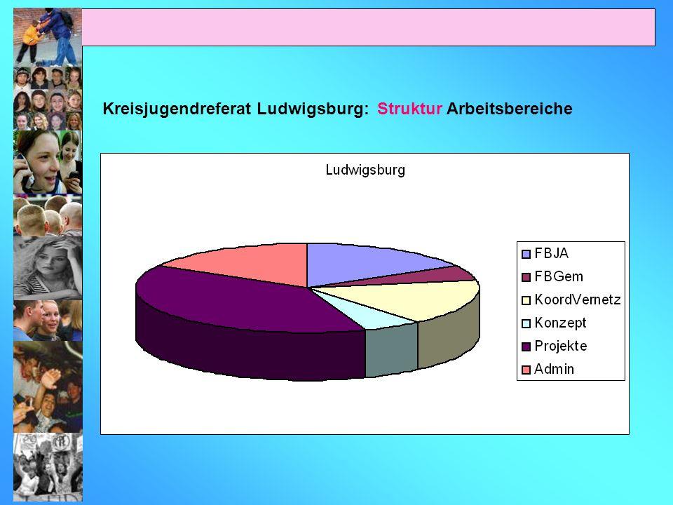 Kreisjugendreferat Ludwigsburg: Struktur Arbeitsbereiche