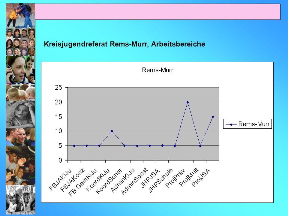 Kreisjugendreferat Rems-Murr, Arbeitsbereiche