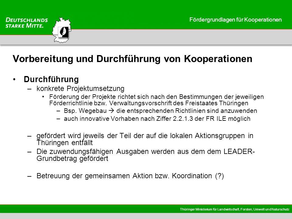 Thüringer Ministerium für Landwirtschaft, Forsten, Umwelt und Naturschutz Fördergrundlagen für Kooperationen Kooperationsvereinbarung Inhalte u.a.: –Ziele der Kooperation –Benennung der Partner (Kontaktdaten) –Festlegung der federführenden RAG –Aufgaben der federführenden RAG –Beschreibung der Projekte –Rolle und Pflichten der Kooperations- und Projektpartner –Finanzieller Rahmen (Gesamtbudget und finanzielle Beiträge der einzelnen Partner) –Leitfaden der EU KOM; Kap.