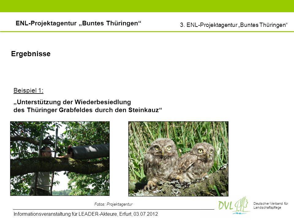 Deutscher Verband für Landschaftspflege Ergebnisse Beispiel 1: Unterstützung der Wiederbesiedlung des Thüringer Grabfeldes durch den Steinkauz Fotos: