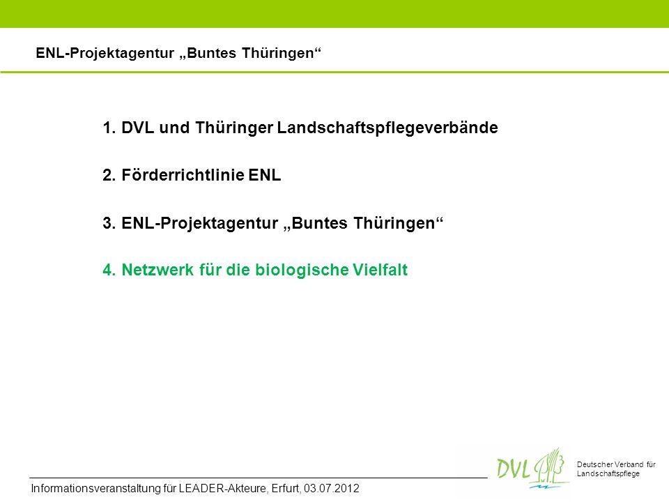 Deutscher Verband für Landschaftspflege 2. Förderrichtlinie ENL 3. ENL-Projektagentur Buntes Thüringen ENL-Projektagentur Buntes Thüringen 4. Netzwerk