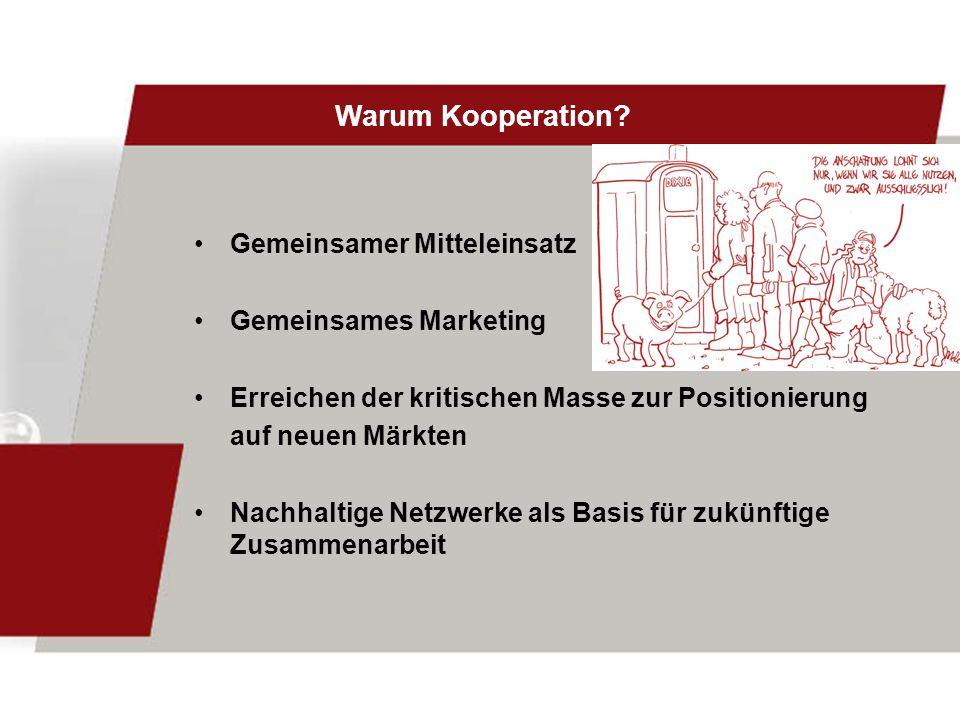 Warum Kooperation? Gemeinsamer Mitteleinsatz Gemeinsames Marketing Erreichen der kritischen Masse zur Positionierung auf neuen Märkten Nachhaltige Net
