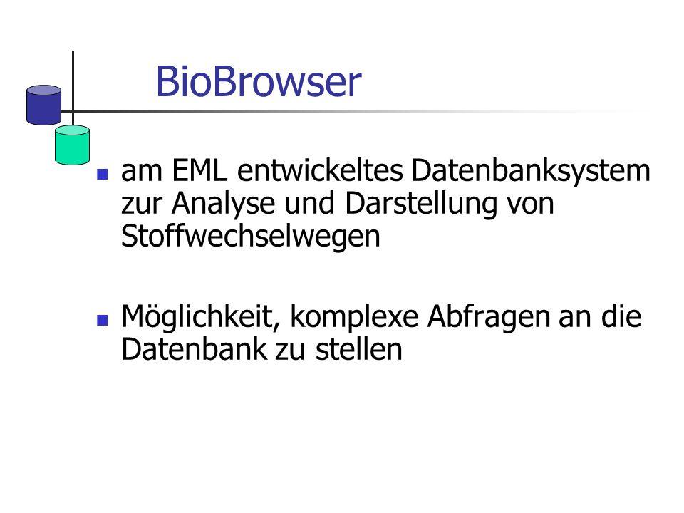 BioBrowser am EML entwickeltes Datenbanksystem zur Analyse und Darstellung von Stoffwechselwegen Möglichkeit, komplexe Abfragen an die Datenbank zu st