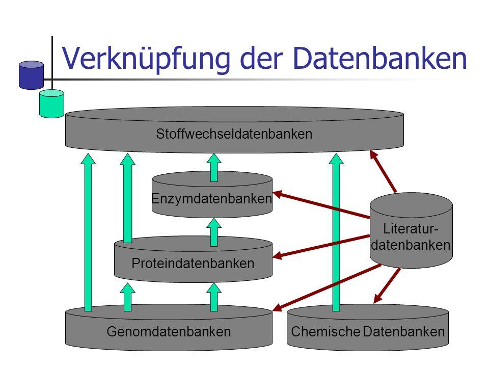 Verknüpfung der Datenbanken Chemische DatenbankenGenomdatenbanken Literatur- datenbanken Stoffwechseldatenbanken Enzymdatenbanken Proteindatenbanken