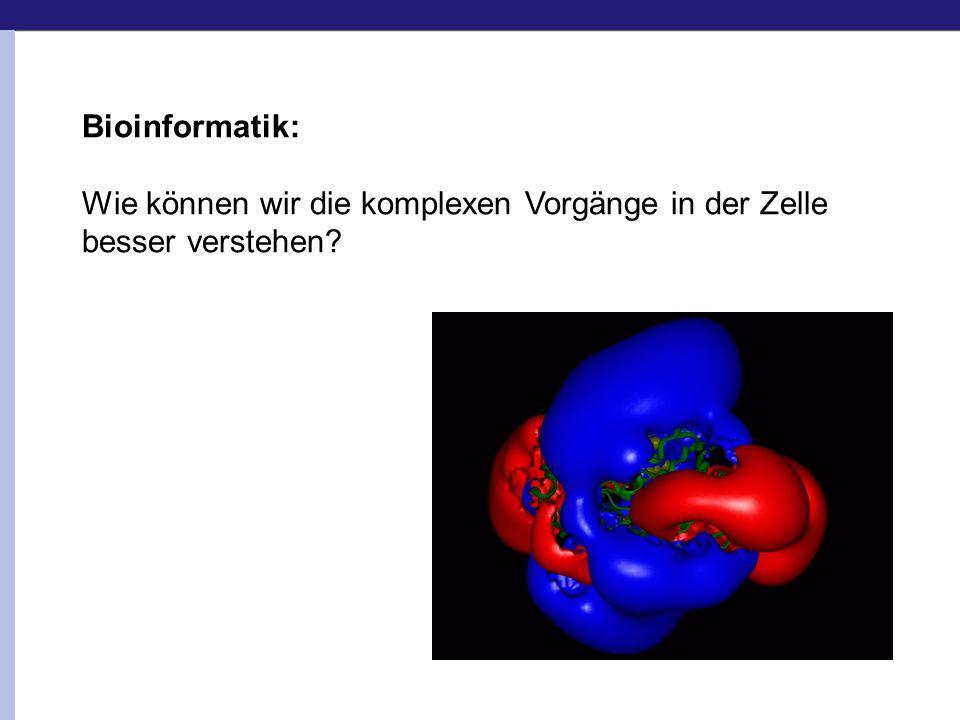 Bioinformatik: Wie können wir die komplexen Vorgänge in der Zelle besser verstehen?