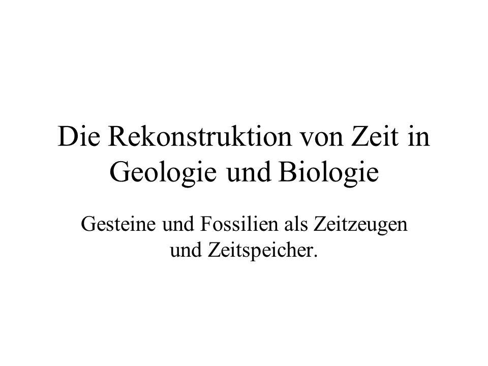 Die Rekonstruktion von Zeit in Geologie und Biologie Gesteine und Fossilien als Zeitzeugen und Zeitspeicher.