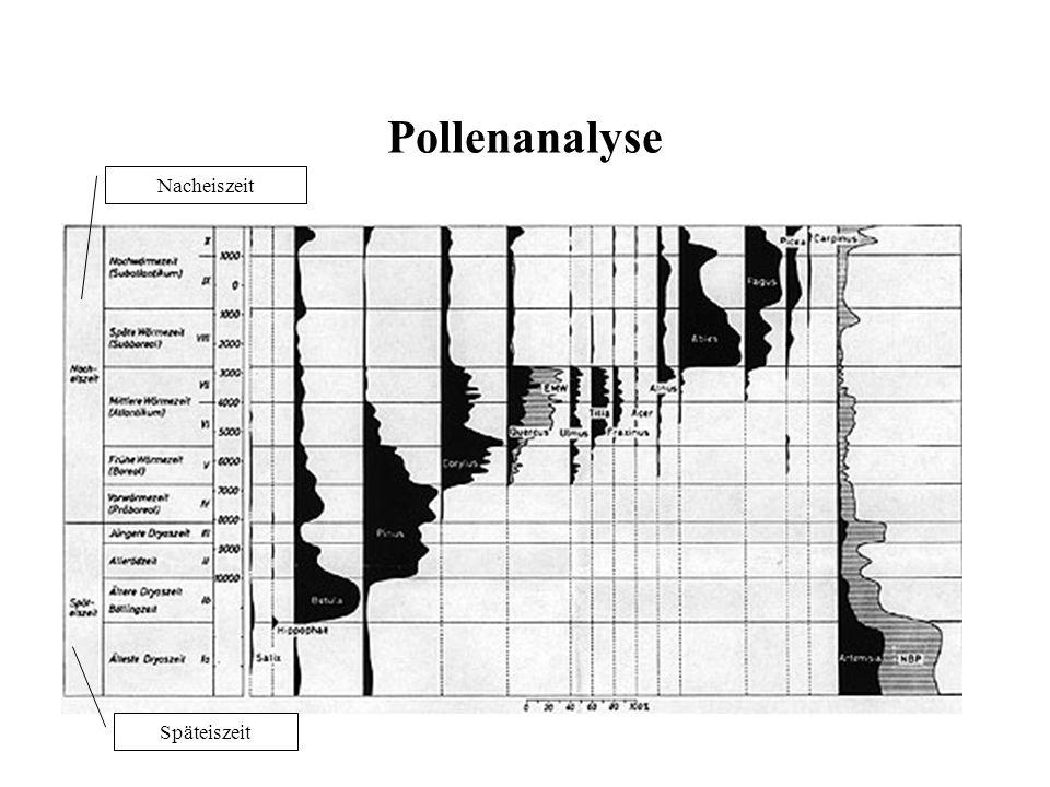 Pollenanalyse Nacheiszeit Späteiszeit
