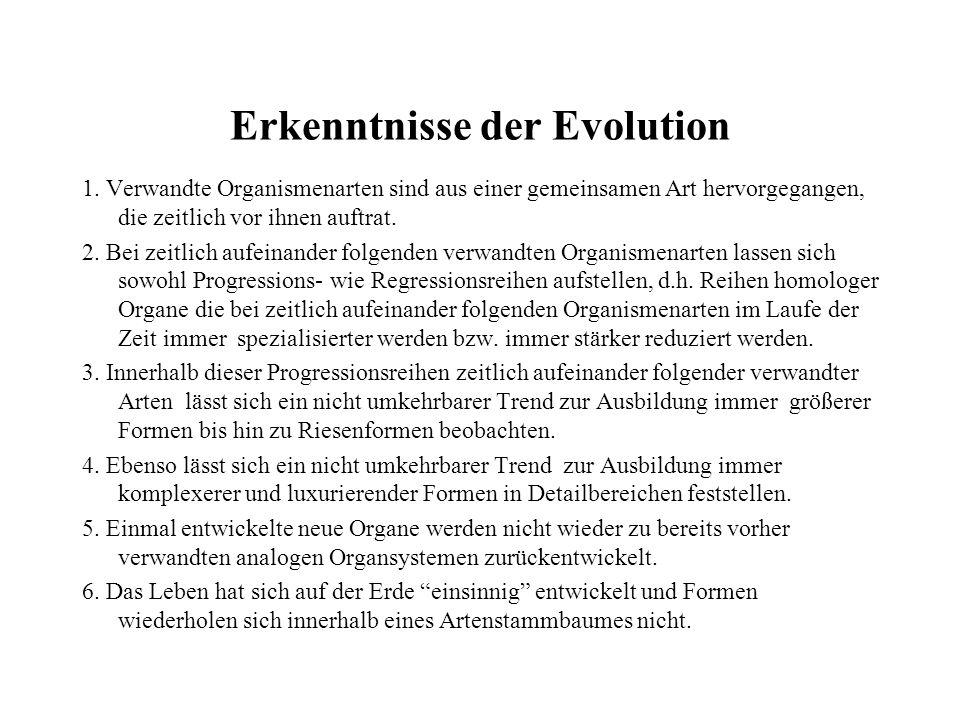 Erkenntnisse der Evolution 1. Verwandte Organismenarten sind aus einer gemeinsamen Art hervorgegangen, die zeitlich vor ihnen auftrat. 2. Bei zeitlich