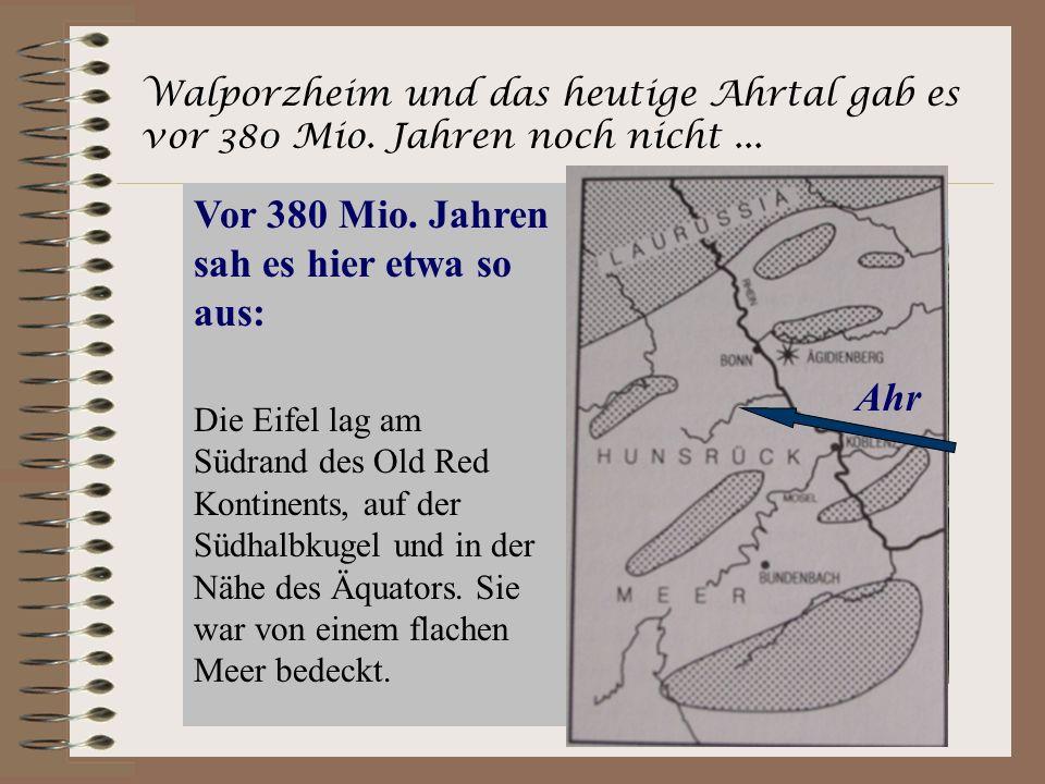 Walporzheim und das heutige Ahrtal gab es vor 380 Mio. Jahren noch nicht... Vor 380 Mio. Jahren sah es hier etwa so aus: Ahr Die Eifel lag am Südrand