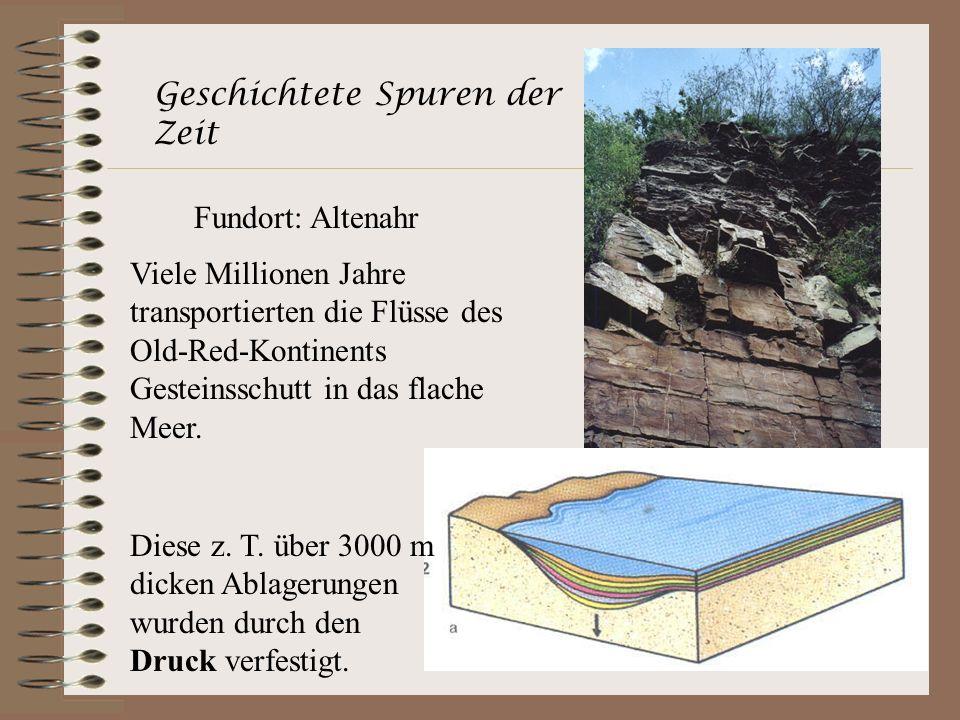 Geschichtete Spuren der Zeit Fundort: Altenahr Viele Millionen Jahre transportierten die Flüsse des Old-Red-Kontinents Gesteinsschutt in das flache Me