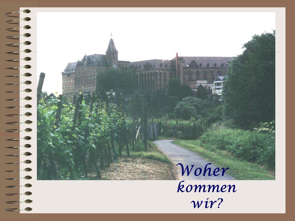 Auf zum Strandspaziergang nach Walporzheim.Hier kann man im Uferbereich eines 380 Mio.