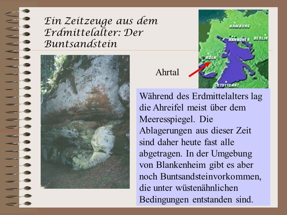 Ein Zeitzeuge aus dem Erdmittelalter: Der Buntsandstein Während des Erdmittelalters lag die Ahreifel meist über dem Meeresspiegel. Die Ablagerungen au