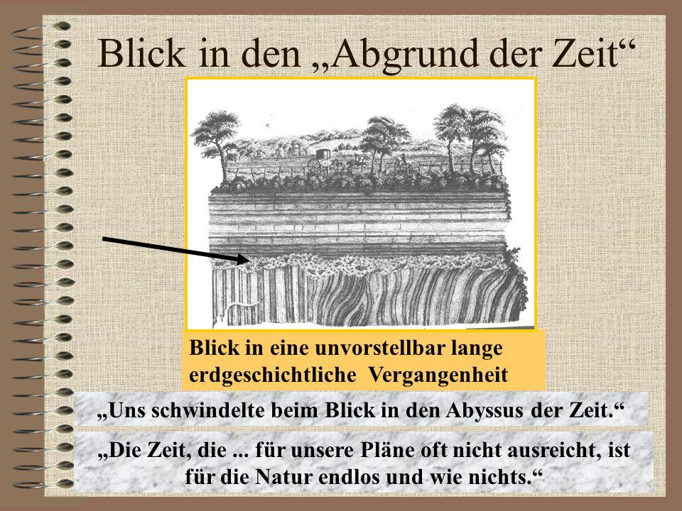 Und weshalb hätte man vor ca.380 Mio. Jahren in Walporzheim einen Strandspaziergang machen können.