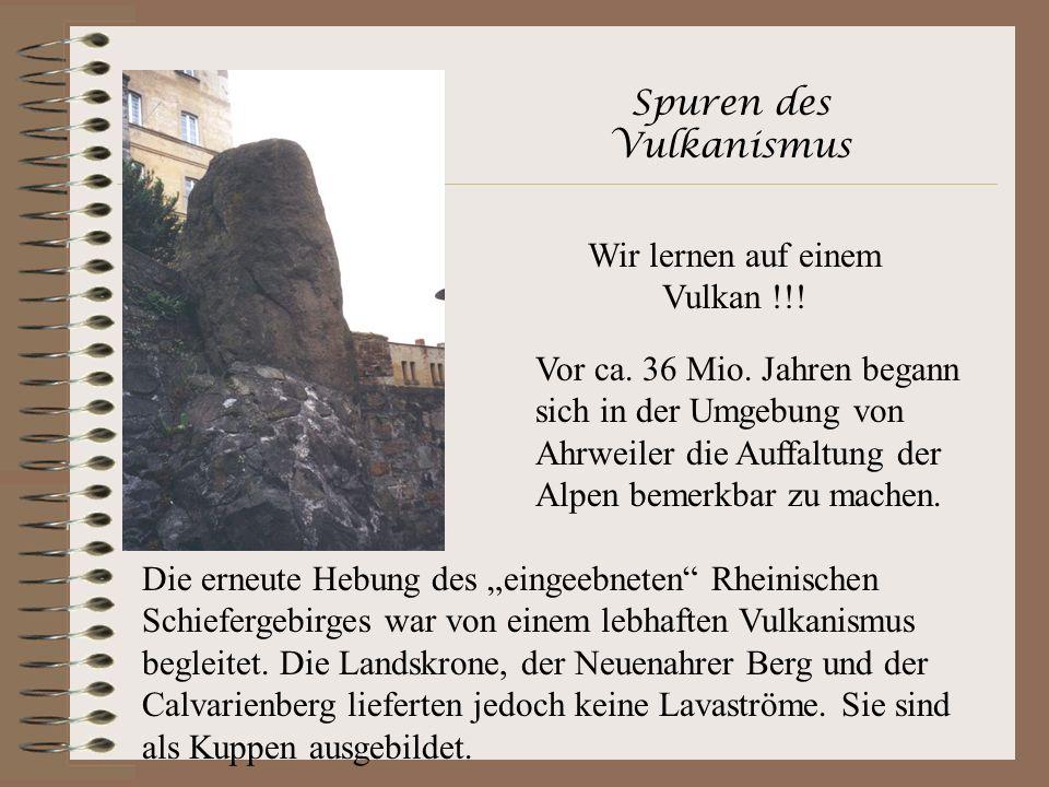 Spuren des Vulkanismus Wir lernen auf einem Vulkan !!! Vor ca. 36 Mio. Jahren begann sich in der Umgebung von Ahrweiler die Auffaltung der Alpen bemer