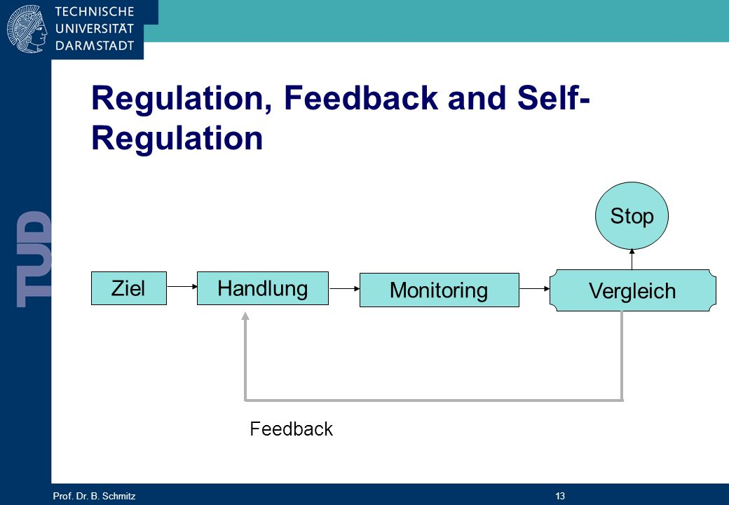Prof. Dr. B. Schmitz 13 ZielHandlung Monitoring Stop Vergleich Feedback Regulation, Feedback and Self- Regulation