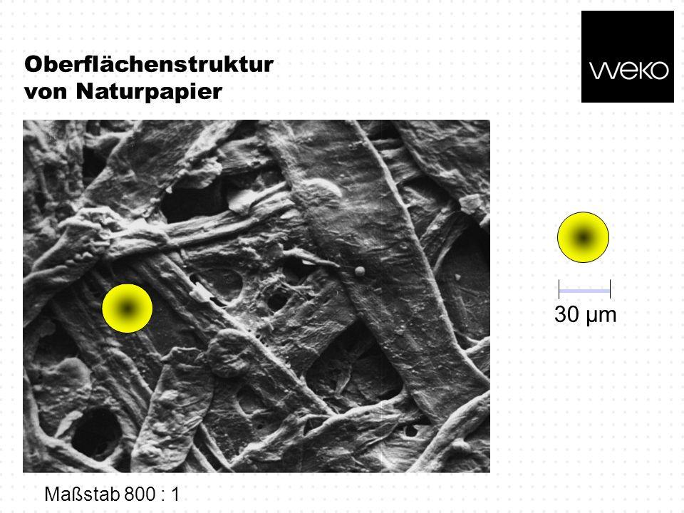 Oberflächenstruktur von Naturpapier 30 µm Maßstab 800 : 1
