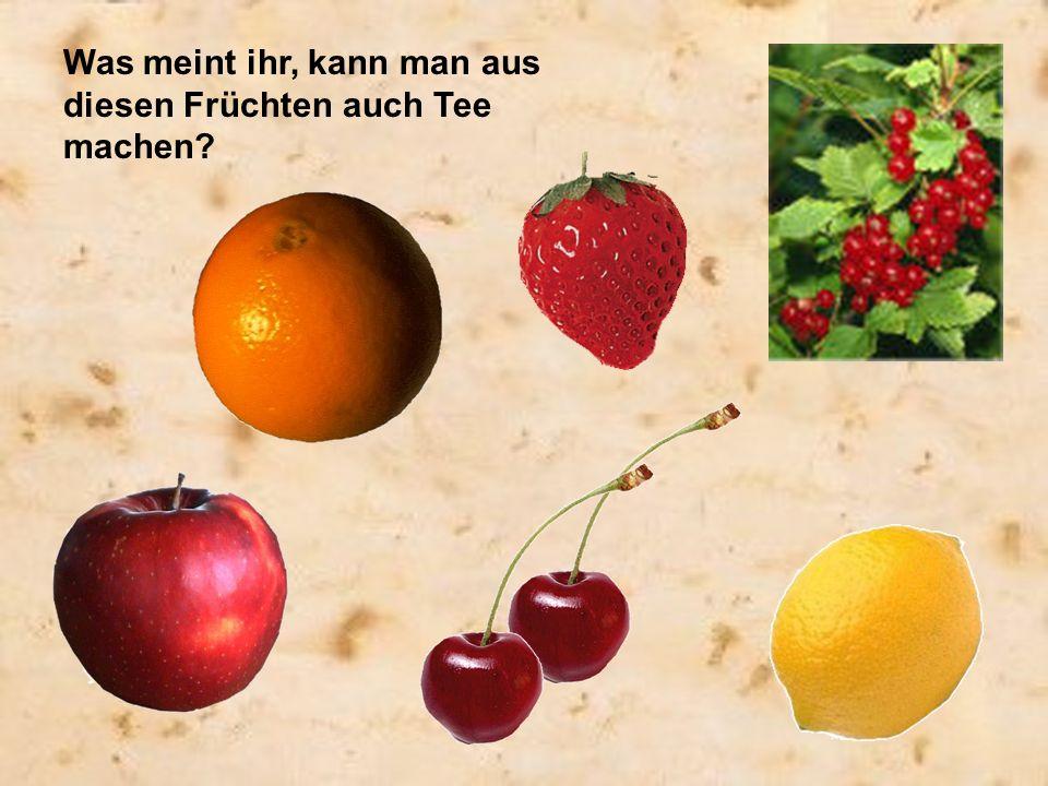 Was meint ihr, kann man aus diesen Früchten auch Tee machen?