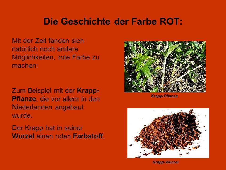 Krapp-Pflanze Krapp-Wurzel Die Geschichte der Farbe ROT: Mit der Zeit fanden sich natürlich noch andere Möglichkeiten, rote Farbe zu machen: Zum Beisp