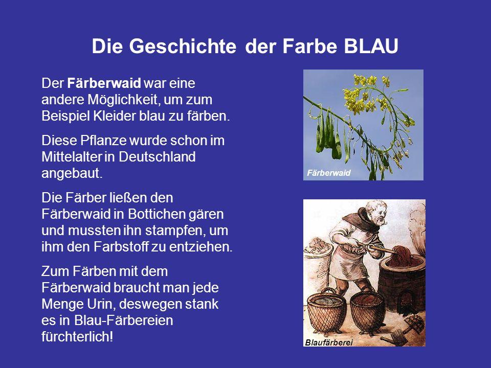 Die Geschichte der Farbe BLAU Färberwaid Blaufärberei Der Färberwaid war eine andere Möglichkeit, um zum Beispiel Kleider blau zu färben. Diese Pflanz