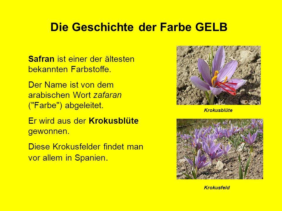 Die Geschichte der Farbe GELB Krokusblüte Krokusfeld Safran ist einer der ältesten bekannten Farbstoffe. Der Name ist von dem arabischen Wort zafaran