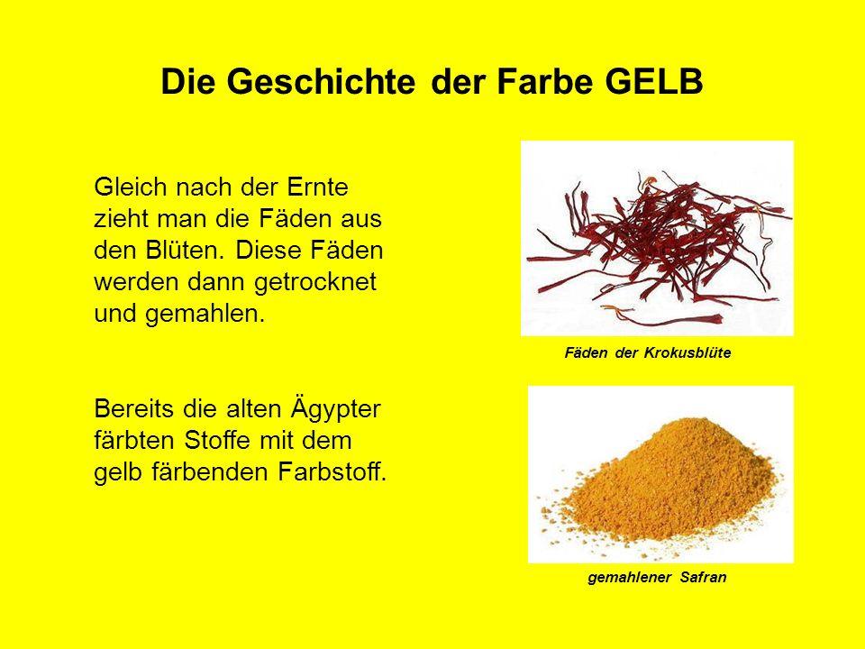 Die Geschichte der Farbe GELB gemahlener Safran Fäden der Krokusblüte Gleich nach der Ernte zieht man die Fäden aus den Blüten. Diese Fäden werden dan