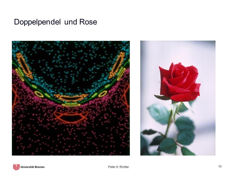 Peter H. Richter 15 Doppelpendel und Rose