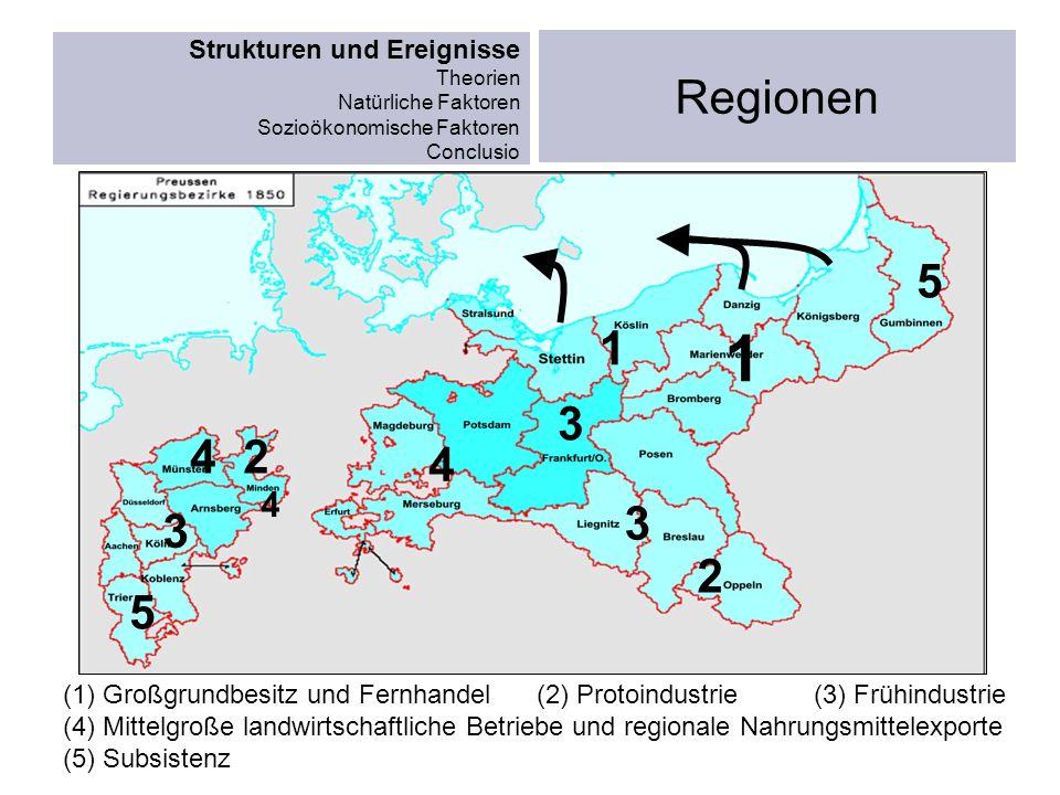 (1) Großgrundbesitz und Fernhandel (2) Protoindustrie (3) Frühindustrie (4) Mittelgroße landwirtschaftliche Betriebe und regionale Nahrungsmittelexpor