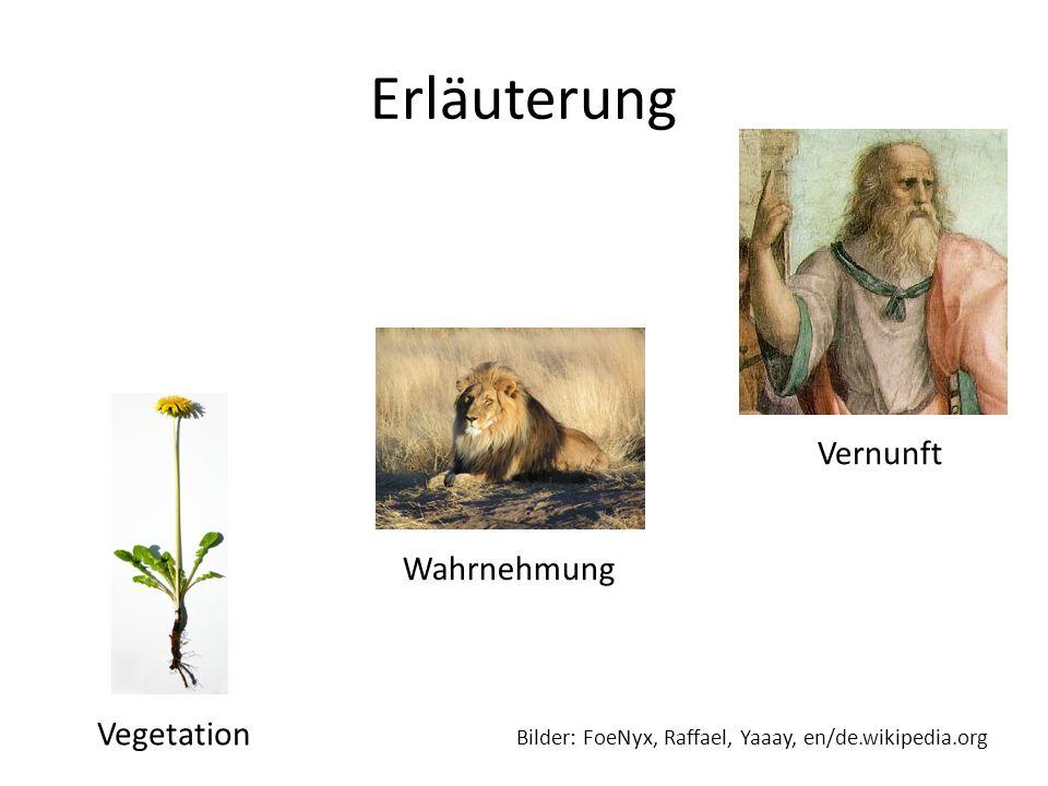 Erläuterung Vegetation Bilder: FoeNyx, Raffael, Yaaay, en/de.wikipedia.org Wahrnehmung Vernunft