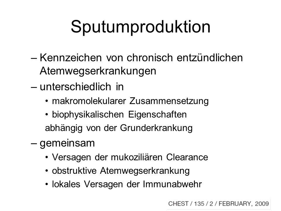 Mucus Eigenschaften –antioxidativ –Inhibition von Proteasen –antimikrobiell Hauptbestandteil: Mucin (Glycoproteine) Mukoziliäre Clearance: adaequates Verhältnis von Volumen, Mucuszusam- mensetzung, Flüssigkeit, ziliärer Schlagfrequenz
