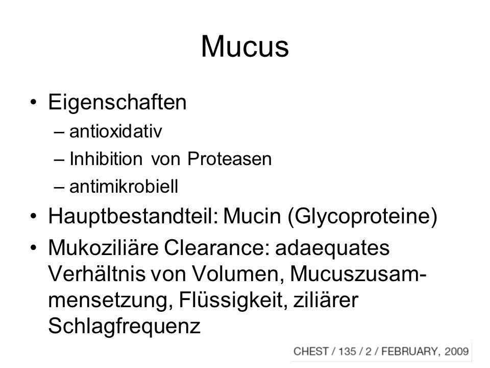 Mucus bei CF Biopolymere dominieren –DNA –filamentöses Aktin, Proteoglykane –Biofilm kaum intaktes Mucin aufgrund Proteolyse die mukoziliäre Clearance wird überfordert