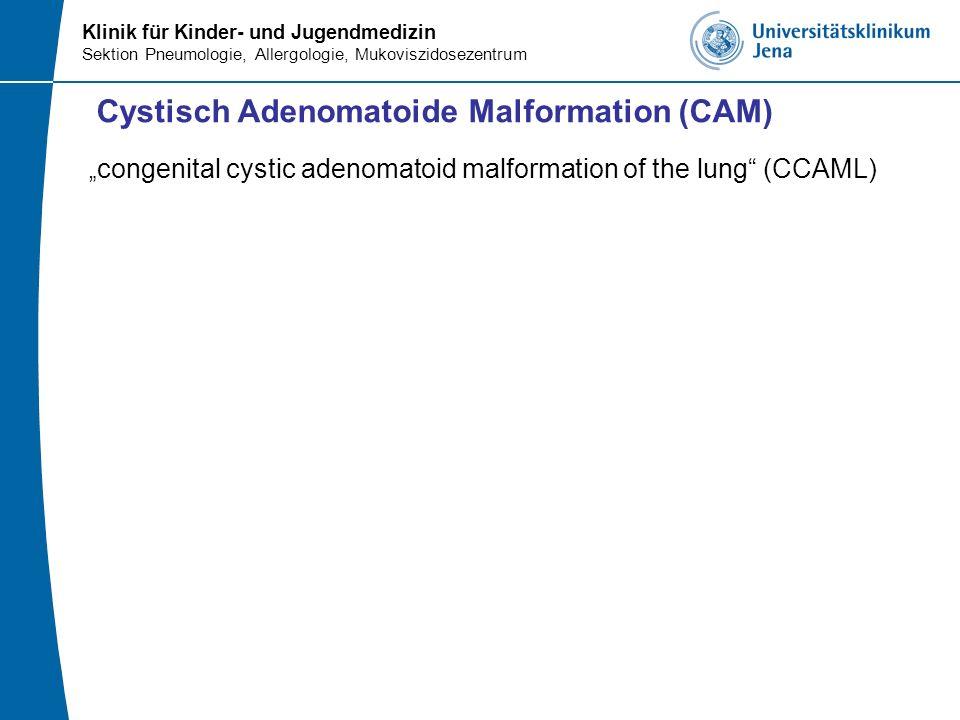 congenital cystic adenomatoid malformation of the lung (CCAML) Cystisch Adenomatoide Malformation (CAM)