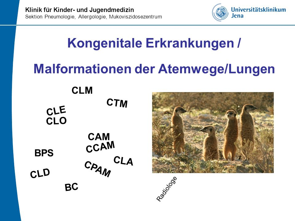 Klinik für Kinder- und Jugendmedizin Sektion Pneumologie, Allergologie, Mukoviszidosezentrum Therapie (Congenital Pulmonary Abnormalities)