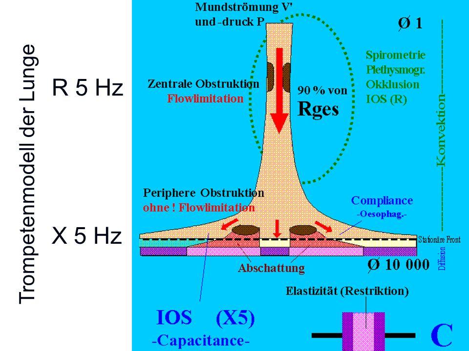 X 5 Hz R 5 Hz Trompetenmodell der Lunge