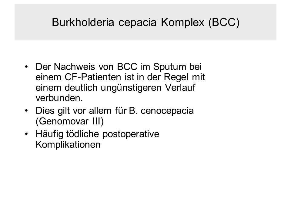 Burkholderia cepacia Komplex (BCC) Der Nachweis von BCC im Sputum bei einem CF-Patienten ist in der Regel mit einem deutlich ungünstigeren Verlauf verbunden.