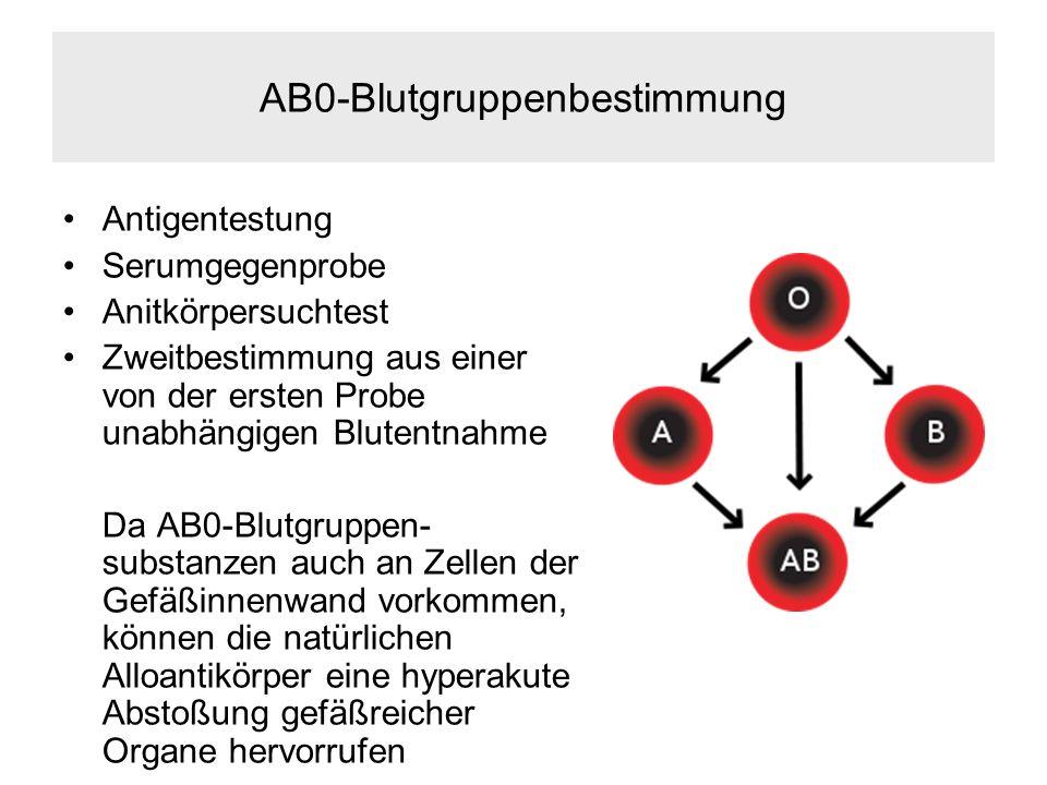 AB0-Blutgruppenbestimmung Antigentestung Serumgegenprobe Anitkörpersuchtest Zweitbestimmung aus einer von der ersten Probe unabhängigen Blutentnahme Da AB0-Blutgruppen- substanzen auch an Zellen der Gefäßinnenwand vorkommen, können die natürlichen Alloantikörper eine hyperakute Abstoßung gefäßreicher Organe hervorrufen