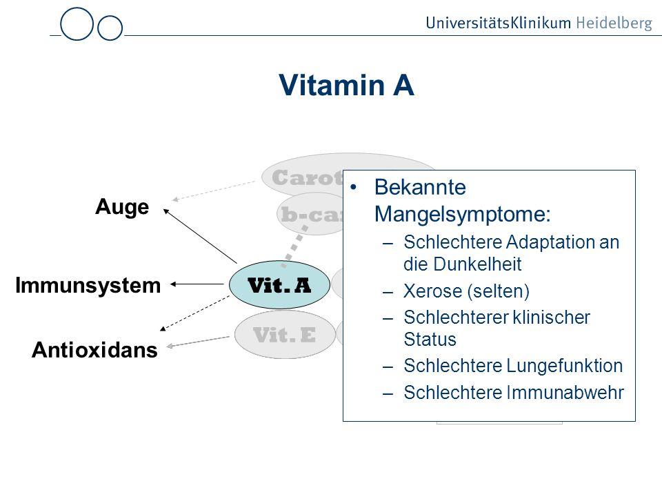 Vitamin A Vit.A Vit. E Vit. D Vit.
