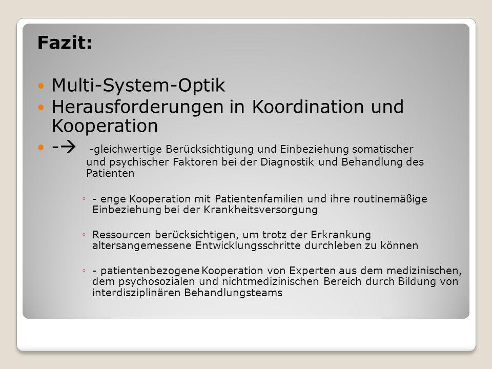 Fazit: Multi-System-Optik Herausforderungen in Koordination und Kooperation - -gleichwertige Berücksichtigung und Einbeziehung somatischer und psychis